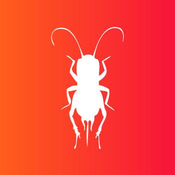 Insectes nantais - marque design d'insectes comestibles
